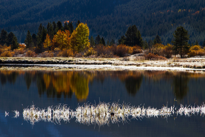 Camp Hale Lake along Highway 24 north of Leadville in early October. <br /> Photo © Cindy Clark
