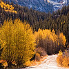 """Near Ouray, Colorado <div id=""""badge"""" style=""""position:relative; width:110px; height:50px; margin:0px; padding:10px; background-color:white; border:1px solid #ff9933;"""">    <div style=""""position:absolute; top:10px; left:10px; padding:0px; margin:0px; width:118px; height:125px; line-height:20px; text-align:center;"""">   <a href=""""http://www.blurb.com/bookstore/detail/898326/?utm_source=badge&utm_medium=banner&utm_content=280x160"""" target=""""_blank"""" style=""""margin:0px; border:0px; padding:0px;"""">  </div>    <div style=""""position:absolute; top:10px; left:5px; overflow:hidden; margin:0px; padding:0px; border:0px; width:120px; text-align:left;"""">        <div style=""""width:105px; overflow:hidden; line-height:18px; margin:0px; padding:0px; border:0px;""""> <a href=""""http://www.blurb.com/bookstore/detail/898326?utm_source=badge&utm_medium=banner&utm_content=280x160"""" style=""""font:bold 12px Arial, Helvetica, sans-serif; color: #fd7820; text-decoration:none;"""">Colorado Colors</a>        </div>        <div style=""""font:bold 10px Arial, Helvetica, sans-serif; color:#545454; line-height:5px; margin:0px; padding:0px; border:0px;"""">                     </div>        <div style=""""font:10px Arial, Helvetica, sans-serif; color:#545454; line-height:15px; margin:0px; padding:0px; border:0px;"""">            By Janet Fikar         </div>    </div>        <div style=""""position:absolute; bottom:8px; left:5px; font:normal 10px Arial, Helvetica, sans-serif; color:#fd7820; line-height:15px; margin:0px; padding:0px; border:0px;"""">        <a href=""""http://www.blurb.com/books/898326"""" force=""""true"""" only_path=""""false"""" style=""""color:#fd7820; text-decoration:none;"""" title=""""Book Preview"""">Book Preview</a>    </div>        <div style=""""position:absolute; top:10px; right:10px; padding:0px; margin:0px;"""">        <a title=""""Photo book"""" href=""""http://www.blurb.com/?utm_source=badge&utm_medium=banner&utm_content=280x160""""  target=""""_blank"""" style=""""border:0; padding:0px; margin:0px; text-decoration:none;"""">             </div>    <div style=""""clear: b"""