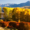 "Colorado Fall Colors <div id=""badge"" style=""position:relative; width:110px; height:50px; margin:0px; padding:10px; background-color:white; border:1px solid #ff9933;"">    <div style=""position:absolute; top:10px; left:10px; padding:0px; margin:0px; width:118px; height:125px; line-height:20px; text-align:center;"">   <a href=""http://www.blurb.com/bookstore/detail/898326/?utm_source=badge&utm_medium=banner&utm_content=280x160"" target=""_blank"" style=""margin:0px; border:0px; padding:0px;"">  </div>    <div style=""position:absolute; top:10px; left:5px; overflow:hidden; margin:0px; padding:0px; border:0px; width:120px; text-align:left;"">        <div style=""width:105px; overflow:hidden; line-height:18px; margin:0px; padding:0px; border:0px;""> <a href=""http://www.blurb.com/bookstore/detail/898326?utm_source=badge&utm_medium=banner&utm_content=280x160"" style=""font:bold 12px Arial, Helvetica, sans-serif; color: #fd7820; text-decoration:none;"">Colorado Colors</a>        </div>        <div style=""font:bold 10px Arial, Helvetica, sans-serif; color:#545454; line-height:5px; margin:0px; padding:0px; border:0px;"">                     </div>        <div style=""font:10px Arial, Helvetica, sans-serif; color:#545454; line-height:15px; margin:0px; padding:0px; border:0px;"">            By Janet Fikar         </div>    </div>        <div style=""position:absolute; bottom:8px; left:5px; font:normal 10px Arial, Helvetica, sans-serif; color:#fd7820; line-height:15px; margin:0px; padding:0px; border:0px;"">        <a href=""http://www.blurb.com/books/898326"" force=""true"" only_path=""false"" style=""color:#fd7820; text-decoration:none;"" title=""Book Preview"">Book Preview</a>    </div>        <div style=""position:absolute; top:10px; right:10px; padding:0px; margin:0px;"">        <a title=""Photo book"" href=""http://www.blurb.com/?utm_source=badge&utm_medium=banner&utm_content=280x160""  target=""_blank"" style=""border:0; padding:0px; margin:0px; text-decoration:none;"">             </div>    <div style=""clear: both; border: 0px solid black;""></div></div>"