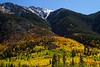 More fall color on Independence Pass near Aspen.<br /> Photo © Cindy Clark