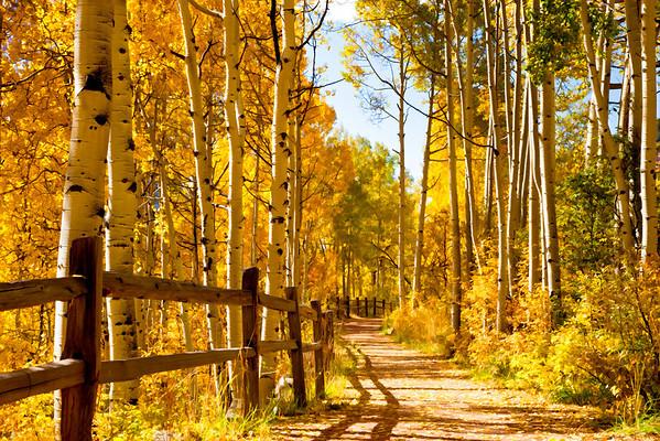 Telluride, Colorado                       Colorado Colors                                                         By Janet Fikar                             Book Preview