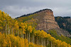 Fiery aspens in southwest Colorado.<br /> Photo © Carl Clark