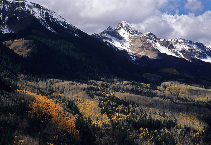 Last bit of autumn color near Telluride.<br /> Photo © Cindy Clark