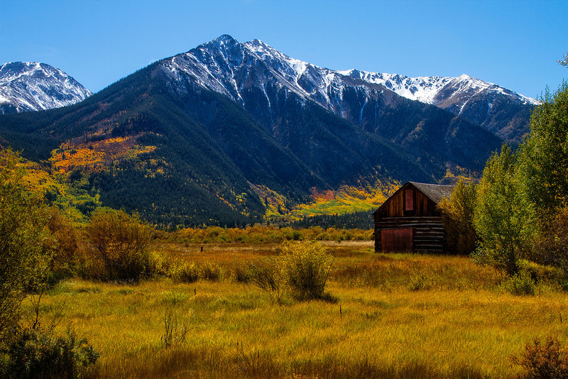 About as classic as Colorado gets!  This was taken on Independence Pass.<br /> Photo © Cindy Clark