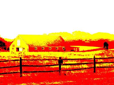 Barn & Pasture