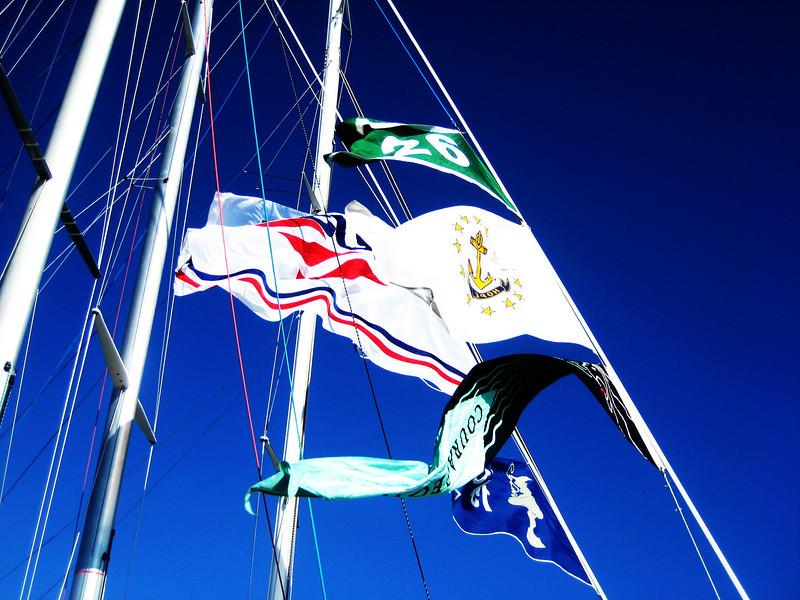 12 Metre Flags