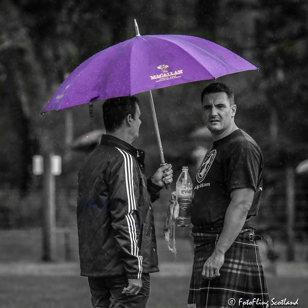 The Purple Umbrella