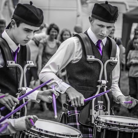 Purple Drumsticks