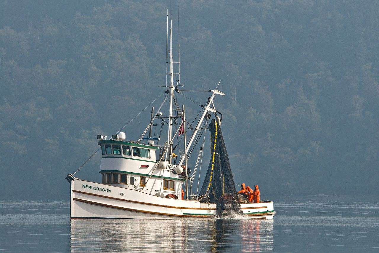Purse seine fishing boats from Gig Harbor, Washington fishing southern Puget Sound on October 18, 2010.