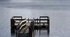 Alicia Stemper: Dock [20110220 competition]