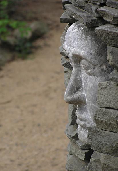 Oliver Vest - botanicalgardens-contemplation