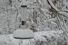 Snow scene-C