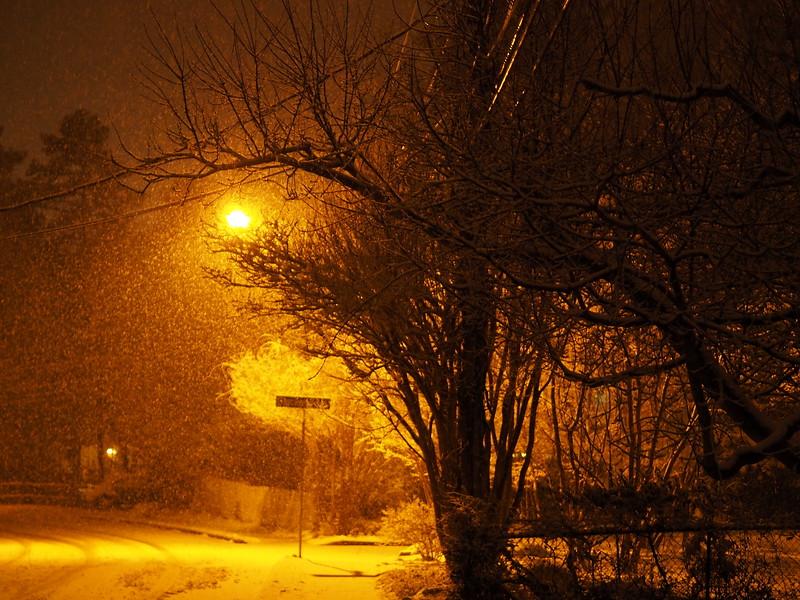 Snowfall by Street Lamp