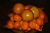 Citrus Study II