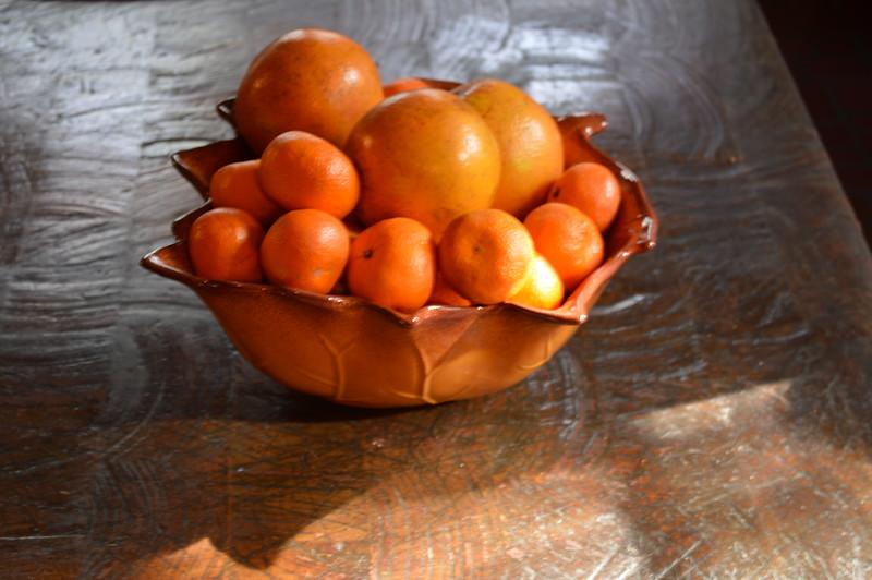 Study in Citrus