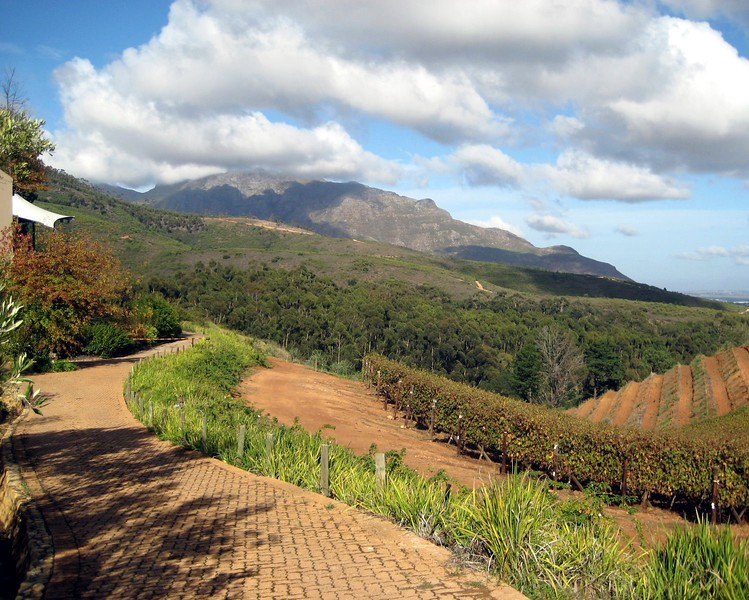 Ariyah April: Feast With Your Eyes: Stellenbosch Win Country, South Africa