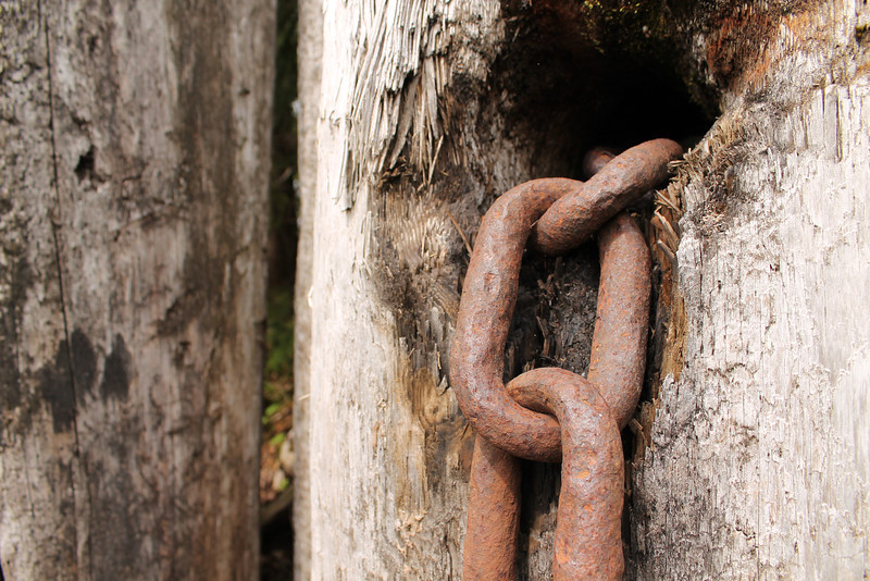 Nicholas Johnson: Chains1