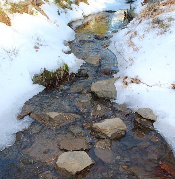 {1st prize winner} 201601 (informal) 'Snow and Ice'  - Allison Thompson: Snowy Creek