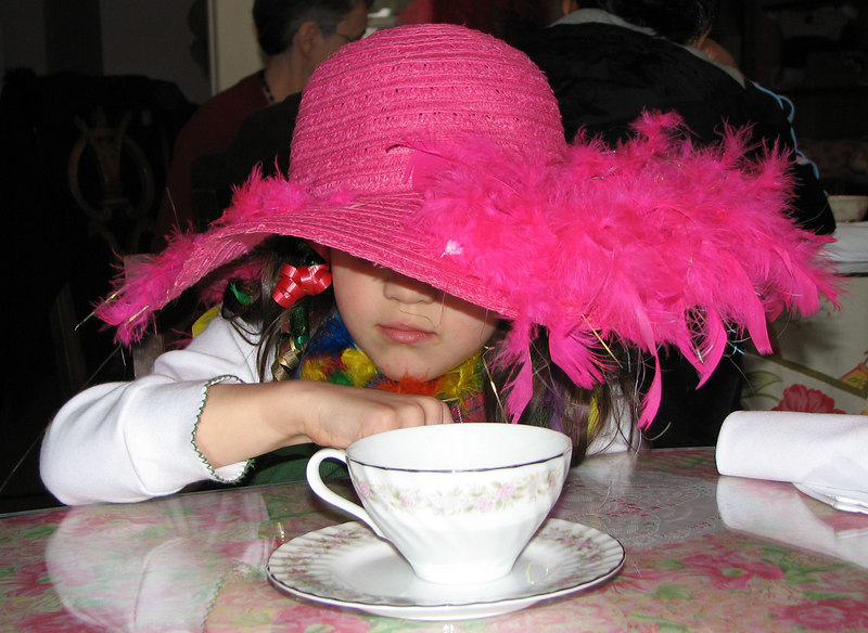 {4th prize winner} 20070211 'Winter in the Triangle' - Darcy Lewandowski: Christmas Tea Party