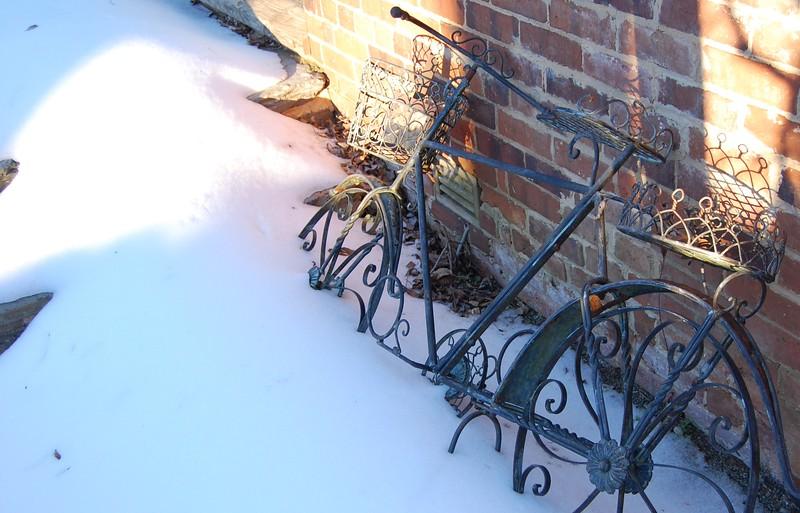 {3rd prize winner} 201601 (informal) 'Snow and Ice'  - Lauri Michel: Garden Art