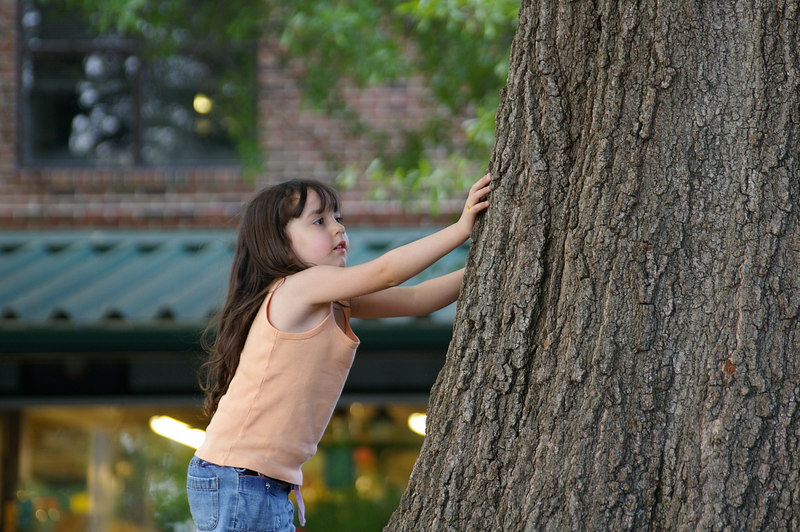 {1st prize winner} 20060423a 'Spring in the Triangle' - Adam Hupp: Girl Playing with a Tree [200602-03 , 20060423 competition]