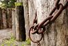 {5th prize winner} 20130127 'Strength' - Nicholas Johnson: Chains 2