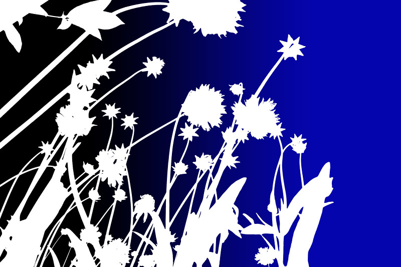 blue flower graphic copy