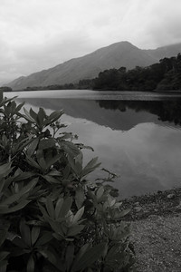 Connemara Tranquility