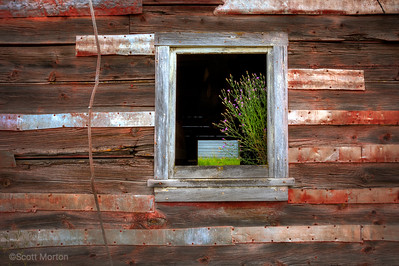 Barn Detail – Loon Lake, WA