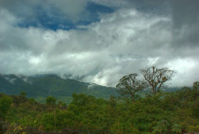 A view from many of the dirt roads.  We drove over 500 miles during out week @ Costa Rica.