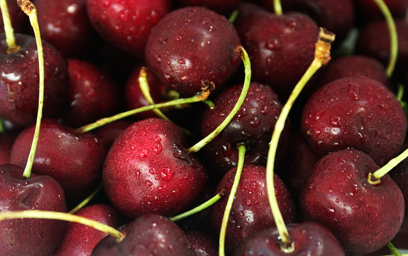 A bunch of cherries with water drops
