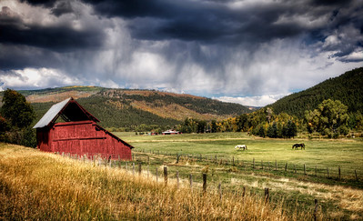 As a summer storm bears down, the horses head for shelter near Bayfield, Colorado