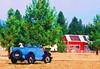 Jalopy Farm