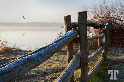 Frosty morning by the lake on Prince Eduard county, Ontario  (zz)