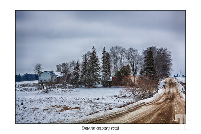 Ontario country road