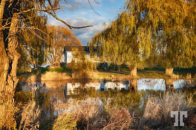 country-house-pond-reflection-ontario-2