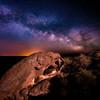 Turtle Rock made of Oolite at Shoofly