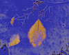 Image 03 v03<br /> Blue colored pencil.<br /> Yellow accented edges.<br /> Photoshop.