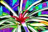 Bromeliad 14 - Topaz Simplify Color Sketch II<br /> <br /> Tropical Dome, Conservatory, Hidden Lake Gardens, Michigan<br /> Taken December 20, 2014