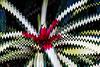 Bromeliad 05 - Filter Forge sine wave distortion<br /> <br /> Tropical Dome, Conservatory, Hidden Lake Gardens, Michigan<br /> Taken December 20, 2014