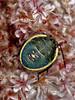 <em>Chlorochroa</em>, green stinkbug, nymph, on buckwheat flower-head. South Shore Beach, Alameda, Alameda County, CA 2012/09/12