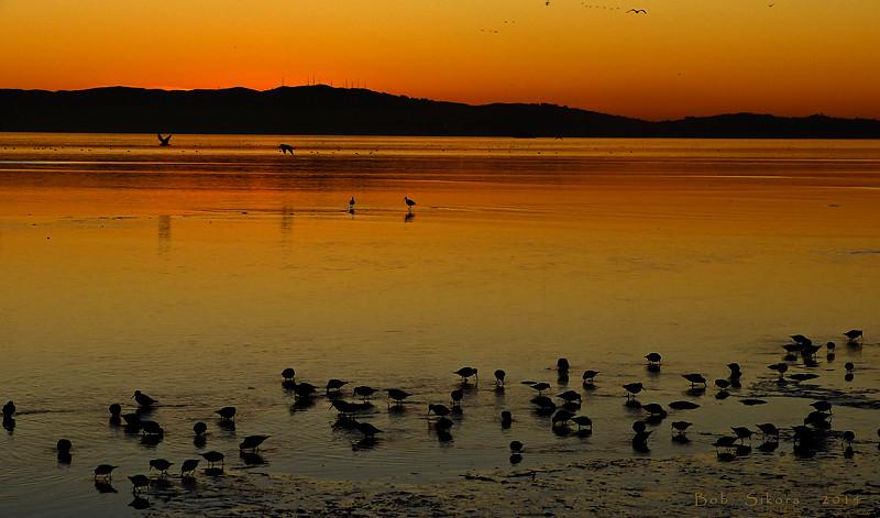 Sunset, Crown Beach<br /> Alameda, Alameda Co., CA