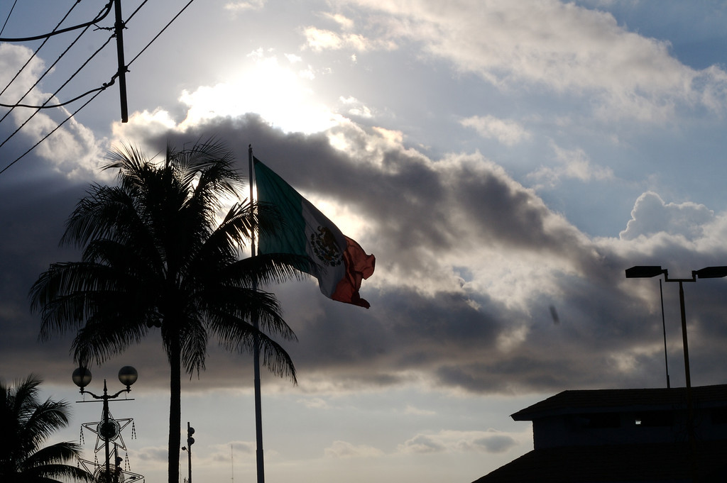 Mexican Flag in the Sun