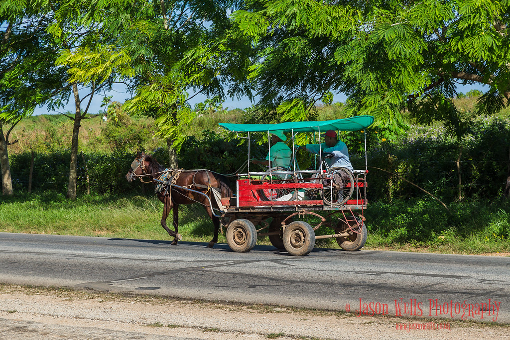 Taken whilst travelling through the province of Ciego de Avila, Cuba.