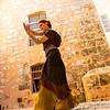 Flamenco Ecos #463