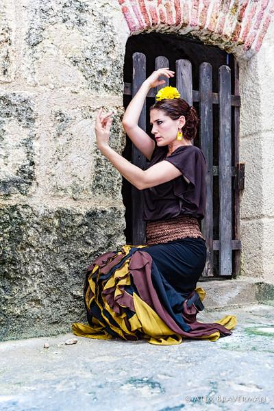 Flamenco Ecos #309