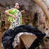 Flamenco Ecos #38