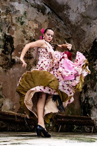 Flamenco Ecos #46