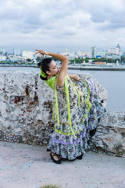 Flamenco Ecos #738