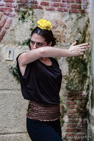 Flamenco Ecos #270